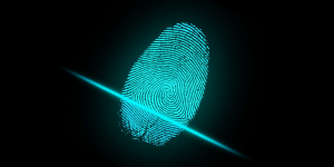 Destruction of Fingerprint Evidence and Photographs